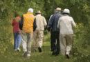 AMPID-SBGG-ABRAz e Portal do Envelhecimento criam comissão para monitorar as reformulações do Estatuto do Idoso