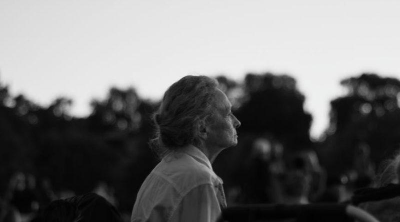 Setembro amarelo – suicídio em idosos