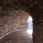 A magia do bambuzal