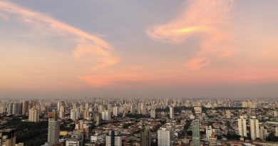São Paulo: ofertas e demandas de serviços à população idosa